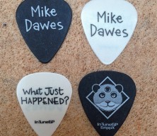 *NEW* x4 Guitar Picks